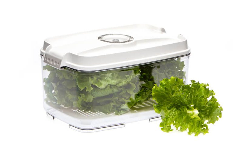how to store lettuce?
