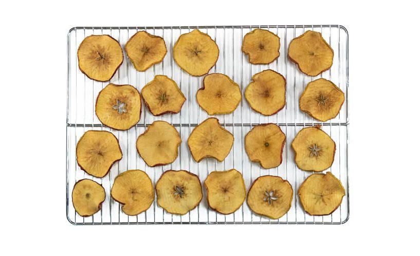 dried apples in a dehydrator