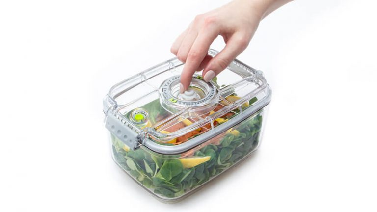 see through food container